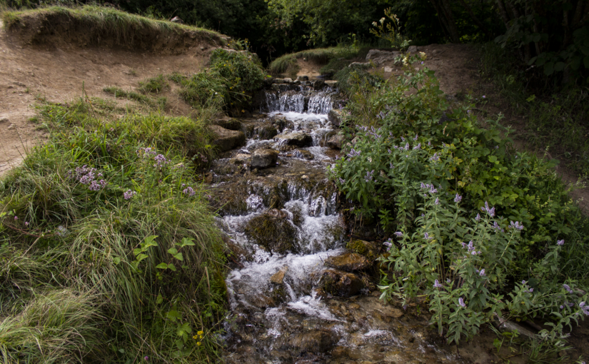 Beekje bij de Dreimühlen waterval
